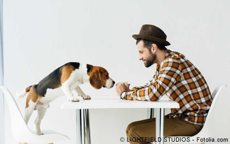 Reha mit Hund